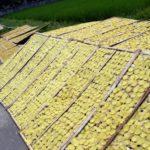 Jual Alat Pemotong Kerupuk Lontongan Manual di Bali