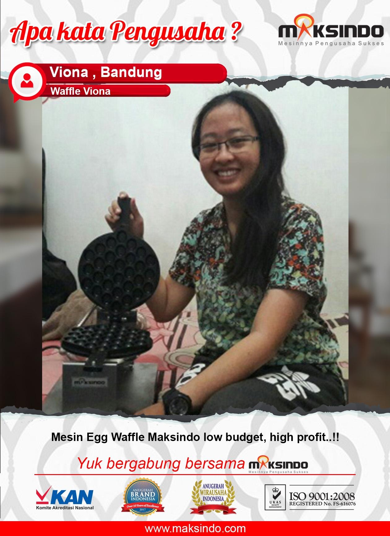 Waffle Viona : Usaha Saya Menggunakan Mesin Egg Waffle Budget Untung Banyak